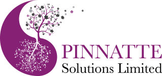 Pinnatte Solutions Logo