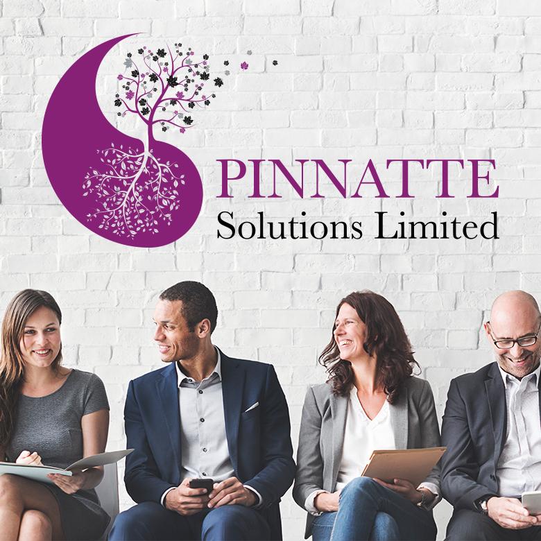 Contact Pinnatte Solutions